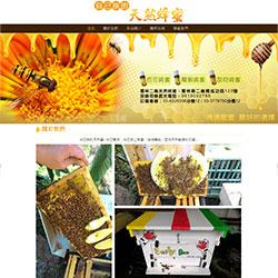 自己採的天然蜂蜜(響應式)