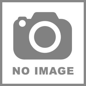 新竹市芳療整體保養職業工會